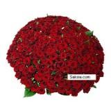 301 Рози - само сега на невероятна цена