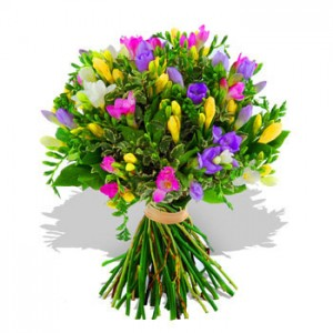 Freesias Bouquet 21 pcs