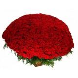 501 Червени рози в кошница