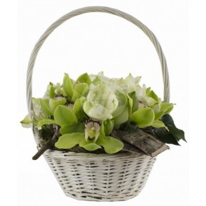 Flower Basket C11