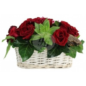 Flower basket C44